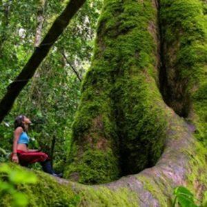 Perú Naturaleza / Aventura